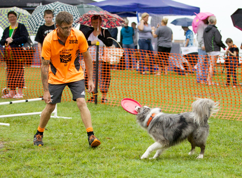 Orange Krush Dog Agility 2017