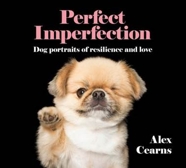 PerfectImperfectionBookCover
